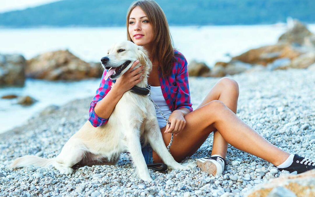 Why-Do-Dogs-Need-a-Holiday-Just-as-Much-as-Humans