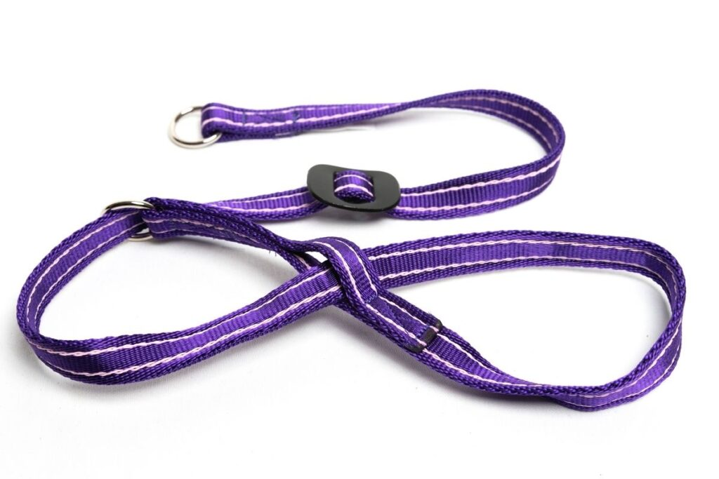 Gencon Dog Headcollar Purple Pink