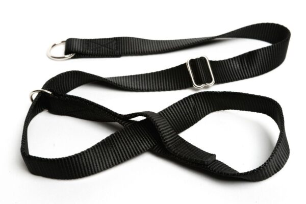 Gencon X Wide (25 mm) Dog Head Collar Black