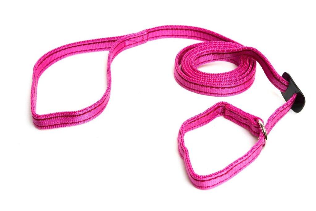 Gencon Dog Slip Lead Pink Burgundy