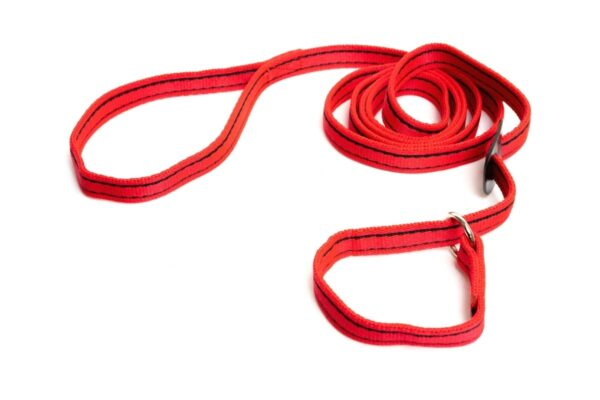 Gencon Dog Slip Lead Red